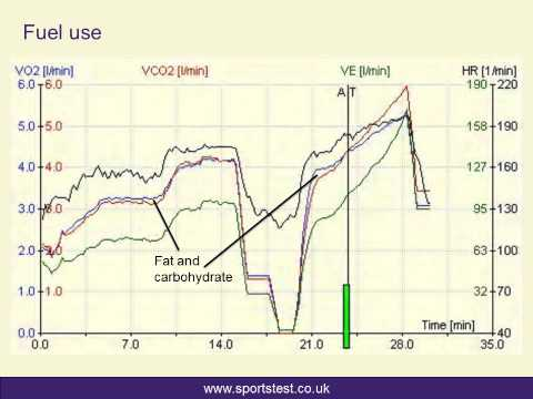 More than just a VO2max test...