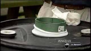 Rain Barrels-Three Minute Gardener