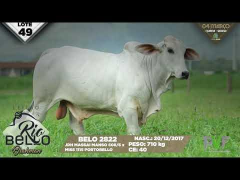 LOTE 49   BELO 2822