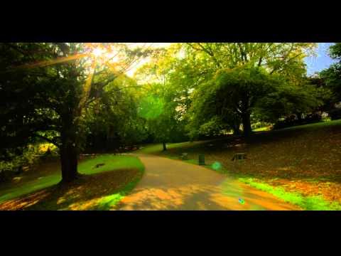 Belle Vue Park Glide Tour