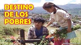 EL DESTINO DE LOS POBRES ~ Película Completa thumbnail