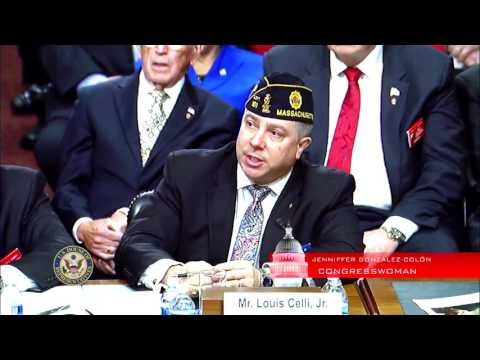 Joint Hearing of the House and Senate Veterans