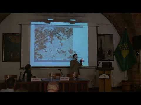 11 Isidre Gavín. Les activitats econòmiques  dins del paisatge vitivinícola.