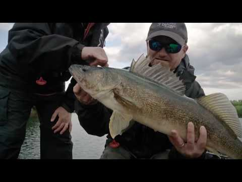 Huge Walleye Using Side Scanning On Hawk Lake | Fish'n Canada