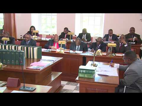 2017/2018 Budget Debate (July 28 - morning)