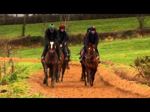 IRELAND LAND OF THE HORSE 2016