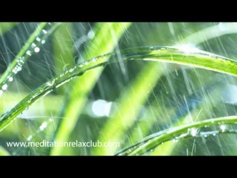 Healing Rain Sounds with Relaxing Meditation Music Long Video