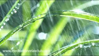 Healing Rain Sounds with Relaxing Meditation Music Long Video