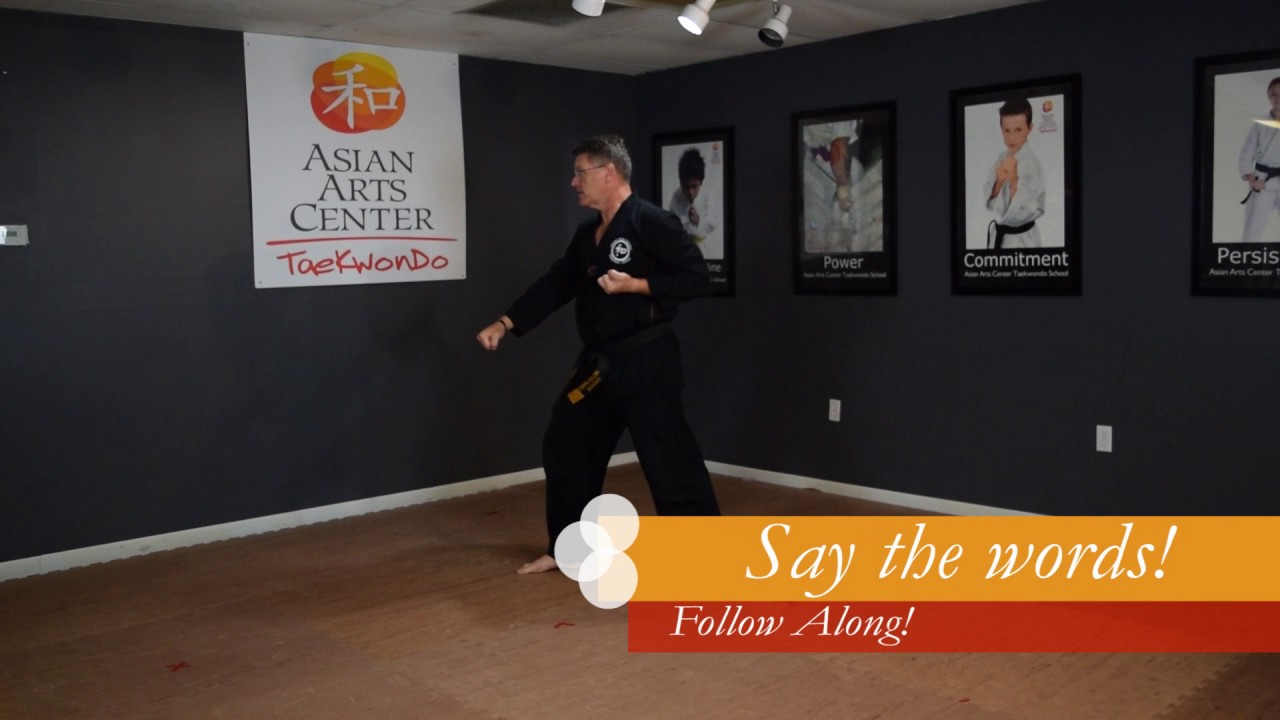 Learn Taegeuk 3 Sam Jang Poomse Taekwondo Form