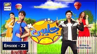Jalebi Episode 22 - 15th June 2019 - ARY Digital