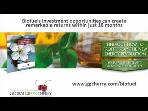 Global Green Cherry - Commodity Market Opportunities