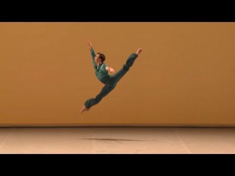Moscow international ballet Competition 2017, Patricio Di Stabile Tallisman Variation
