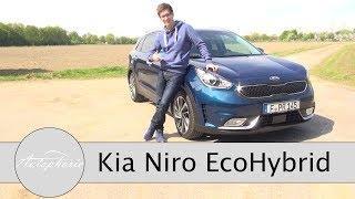 Video 2017 Kia Niro EcoHybrid Fahrbericht / Kompakt SUV der etwas anderen Art - Autophorie download MP3, 3GP, MP4, WEBM, AVI, FLV Agustus 2018