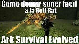 Como domar super facil a la roto rata o roll rat mas info del canal | Ark Survival Evolved