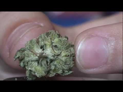 NYC Diesel Review