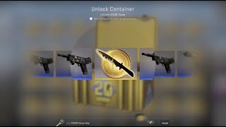 Top 12 knife unboxing - CS20 case
