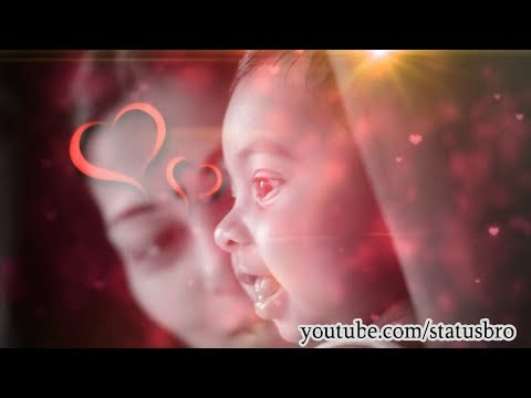 love-you-#amma-heart-touching-whatsapp-status-||-love-you-so-much-amma-||-by-#sj_creations