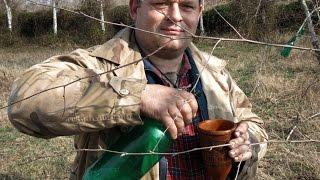 Keltski napitak - Sok od breze