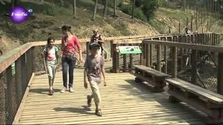 Le renouveau du Parc Animalier d'Auvergne