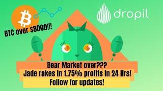 Dropil's Jade: 1.75% Profit in 24 Hours!