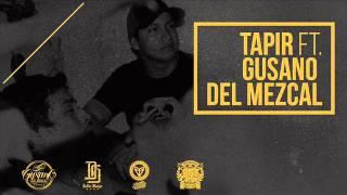Tapir Ft. Gusano del Mezcal - Descuadrados (Audio) / 84 KALLES · MURGA CREW + LINK DE DESCARGA