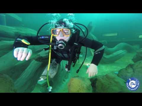 Ocean Divers TODI