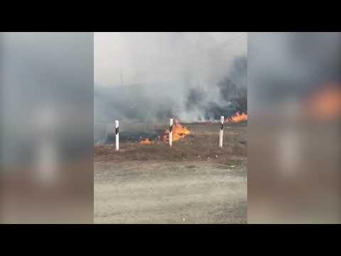Пожар под Медногорском. Оренбургская область