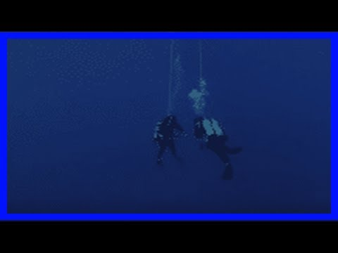 Breaking News | Black coral: a new film about the dramatic story of black coral divers in maui – de