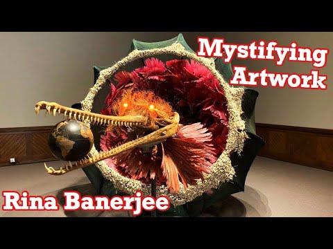 Women Who Love Art | Rina Banerjee PAFA | Female Artists Painters