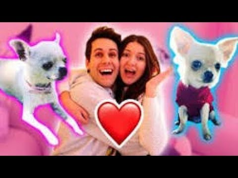 Disegno Kira E Ray Tagged Videos On Videoholder