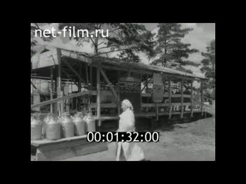 1959г. колхоз Коммунар Владимирская обл