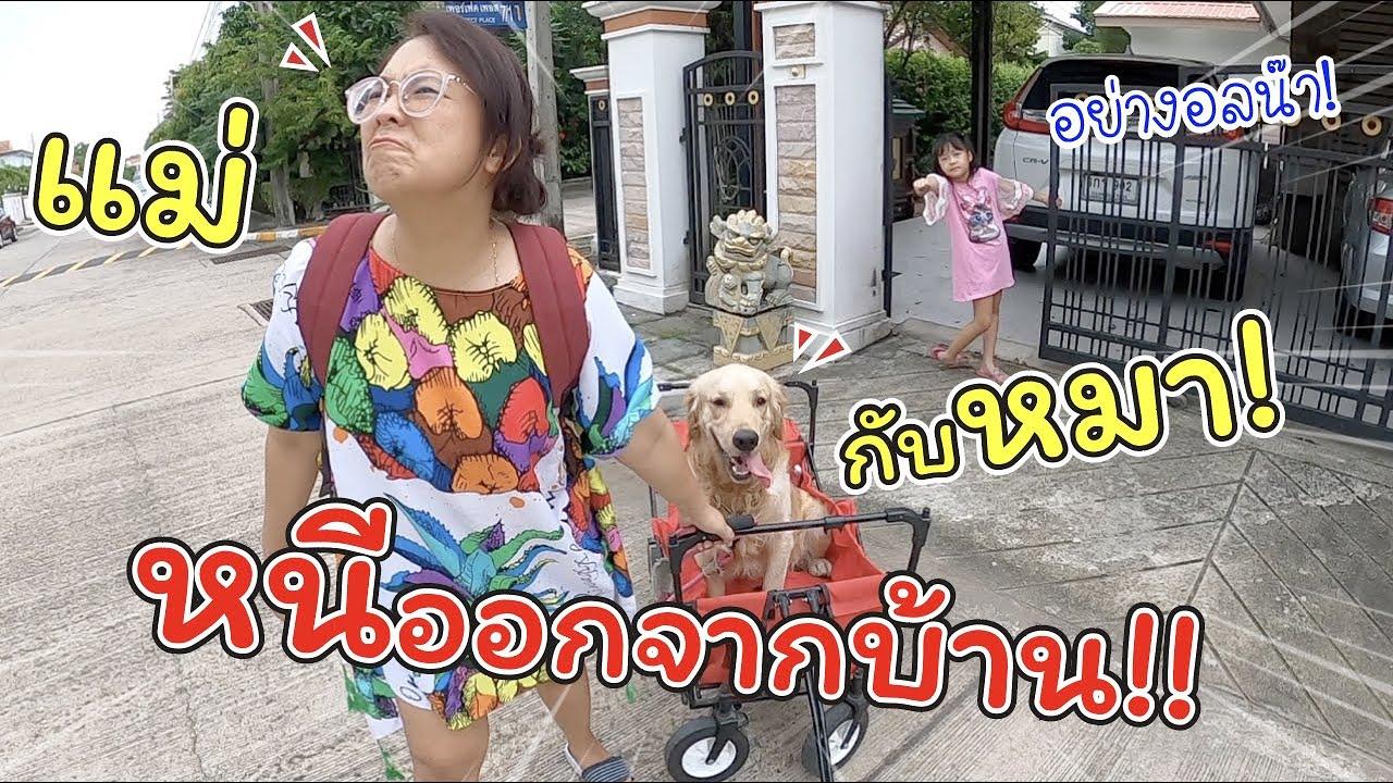 แม่กับหมา หนีออกจากบ้าน ต้องตามไปง้อด่วน!!   ละครสั้นหรรษา   แม่ปูเป้ เฌอแตม Tam Story