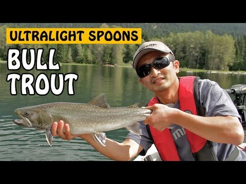 Ultralight Trout Spoons | Fishing With Rod
