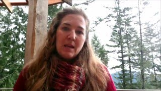 Winter Solstice:  Embracing Stillness