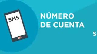 Video BCR Cuentas Simplificadas download MP3, 3GP, MP4, WEBM, AVI, FLV Agustus 2018
