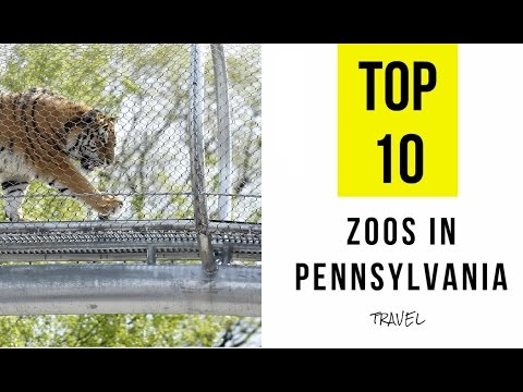 TOP 10. Best Zoos in Pennsylvania: Family holiday