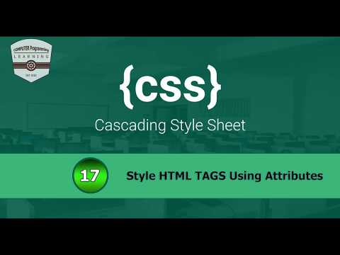 #17 Style HTML Elements using Their Attributes