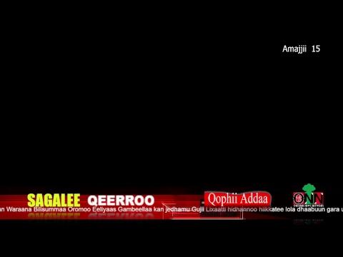 ONN LIVE :   Sagalee QEERROO  Amajjii 15