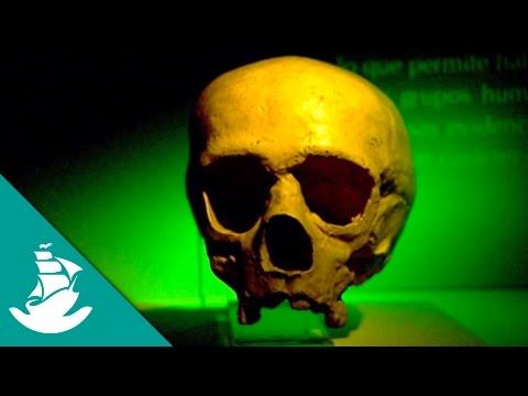 Future: Humans (Full Documentary)