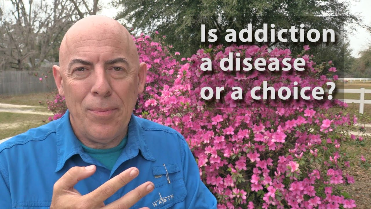 addiction choice or disease Dr blixt responded: recovery is a choice most people need treatment to help arrest there addiction , lots of help some choose that help and others don't, i'm not alway sure why.