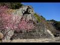 千葉房総の旅 白浜・鋸山地獄覗き の動画、YouTube動画。