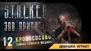 видео S.T.A.L.K.E.R.:Call of Pripyat.Открываем закрытую дверь\Bug with opening doors