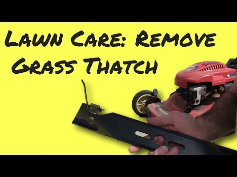 Dethatch a Lawn with a Thatching Blade on Mower