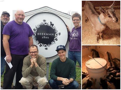 Go Inside the Beekman Boys Famous Goat Farm