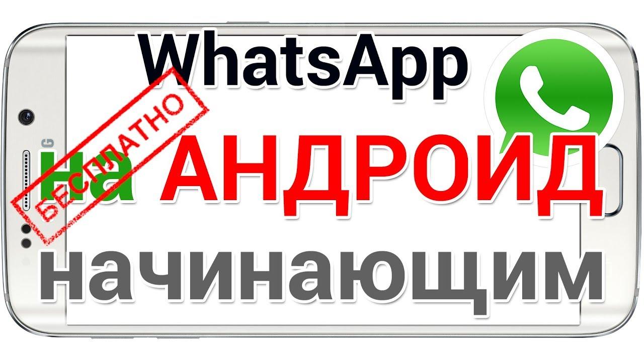 Как скачать Ватсап на телефон Андроид установить и пользоваться. Для начинающих