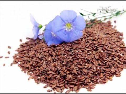 Как похудеть с помощью семян льна. Утро Губернии