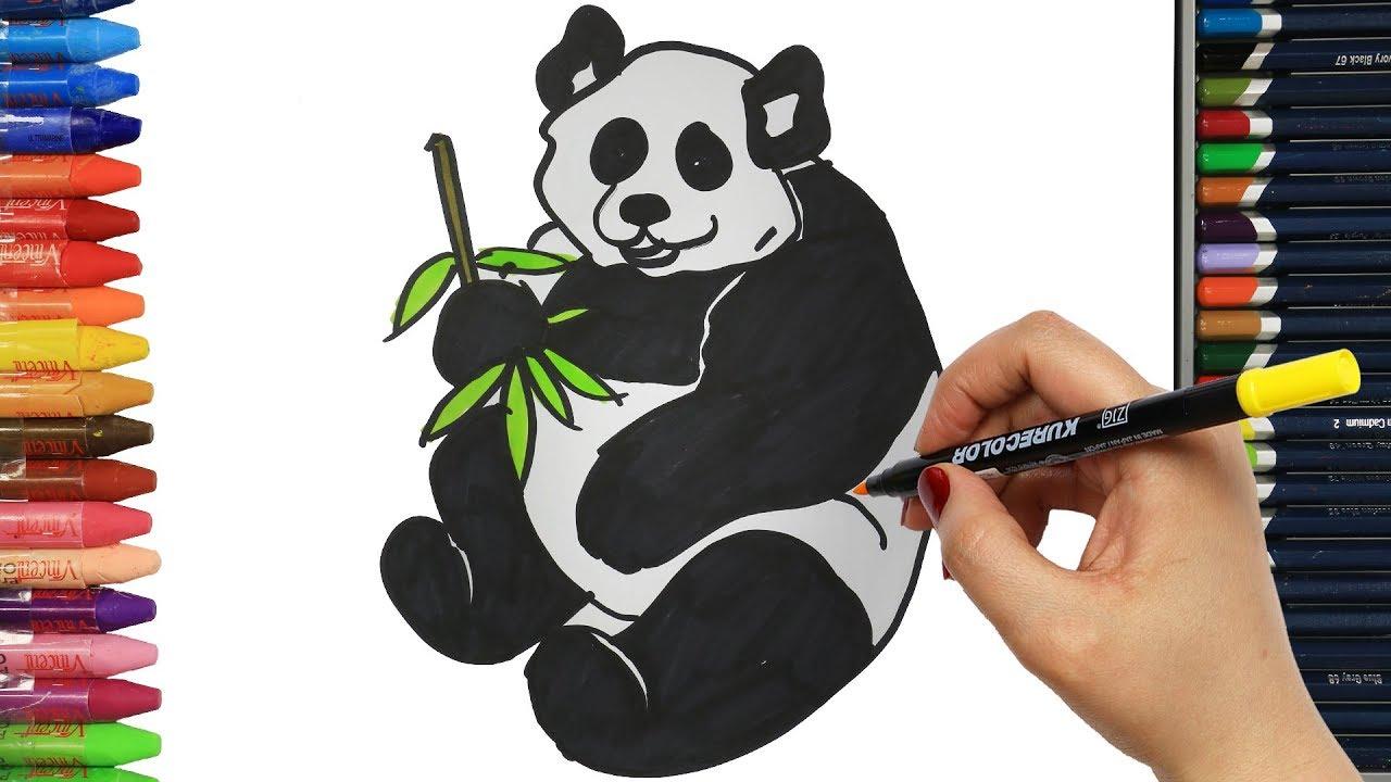 Panda Nasıl çizilir çocuklar Için Eğlenceli Boyama çizelim