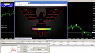 Watch A Pro Trader System Make Easy Money!