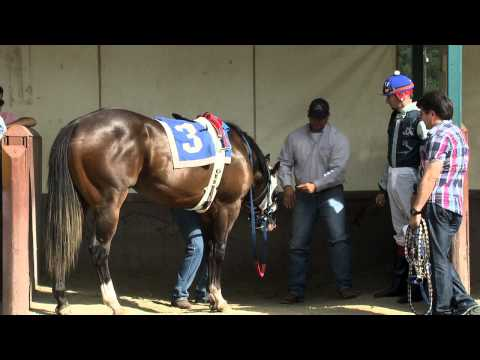 TVG Goes Inside Quarter Horse's Most Iconic Race - All American