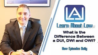 What is the Difference Between a DUI, OWU and DWI? Illinois Criminal Law | Learn About Law
